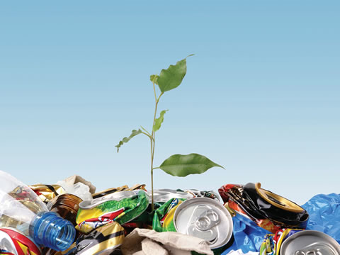 lixo-planta-latinhas
